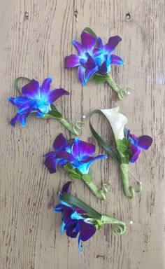 Blue dendrobium orchids and white mini-calla boutonnieres. Photo by Belle Fleur. Prom Flowers, Bridal Flowers, Blue Orchid Wedding, Blue Orchid Bouquet, Blue Dendrobium Orchids, Orchid Boutonniere, Tiffany Blue Weddings, Wedding Decorations, Wedding Ideas
