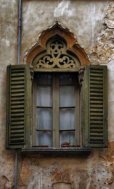 elegant old window (gviquez)