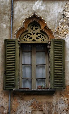 elegant old window (gviquez)