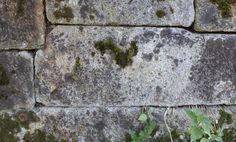 Полигональная кладка в селе Чусовое Вид оврага с моего края, камни лежат на дне, далее видна сама каменная стена. Откуда она начинается - не видно, а спускаться в овраг смелости не хватает - говорят, есть змеи). Трава внизу высокая, мощная.