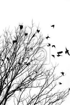 Sticker Vliegende vogels