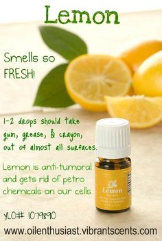 We use lemon oil in our laundry to get the extra dirt off our dog bed blankets!
