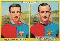 GIULIANO TACCOLA - GIORGIO LODI 1966-67 GENOA Panini Calciatori 1966-1967 - Collection preview - laststicker.com