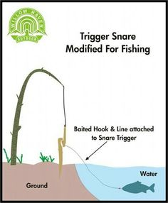 Hmm, this could be really interesting. Have a few lining the river bank, especially where tilapia are known to gather.