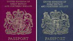 Lords seek rethink on UK passport contract