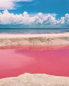 Naturally Pink Lagoon in Mexico Is Like a Real-Life Fairy Tale Dreamscape What color is a lagoon? In the tiny fishing village of Las Coloradas, located on the eastern coast of Mexico's Yucatan Peninsula, it's pink. The Places Youll Go, Places To Visit, Places To Travel, Travel Destinations, Real Life Fairies, Fishing Villages, Baja California, Mexico Travel, Cuba Travel