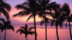 出典:http://www.tripadvisor.jp 一度ハワイを訪れたことのある人は、その穏やかな気候や陽気な雰囲気に魅了されて、必ずといっていいほど「もう一度行きたい!」と口にします。 オアフ島のワイキキにもいいところはたくさんありますが、何度かワイキキにステイしたことがあるという方、次は他の島のリゾートはいかがですか? ハワイ諸島は8個の主要な島と100以上の小島から出来ていますが、その中でも多くの観光客が訪れるのがワイキキのあるオアフ島、ハワイ島、マウイ島、カウアイ島です。その中でも今回はマウイ島の魅力をご紹介します! 1.ラハイナの街探索 出典:http://www.hawaii-arukikata.com 出典:http://blog.livedoor.jp マウイ島の西に位置するラハイナの街は、19世紀初頭にハワイを統一したカメハメハ大王の王国の首都が置かれた歴史のある港町です。約2キロのメインストリートには、クジラなどの海の生物の絵が建物に描かれたギャラリーやオープンテラスのレストランが並び、古き良きノスタルジックなムードが漂っています。…