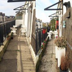 Avant / Après: une terrasse brute transformée en terrasse verdoyante