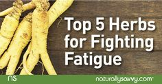 If you're not getting enough sleep, you could probably use a little help in the energy department. These five herbs are excellent at fighting fatigue naturally.