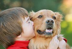 5 cosas que los perros perciben en los humanos http://befamouss.forumfree.it/?t=70910275