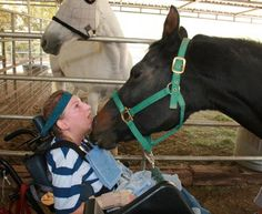 Therapy horse at The Gentle Barn. So sweet...