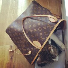 Louis Vuitton Monogram Empreinte Leather Pochette Metis Handbag Article: Made in France – The Fashion Mart New Louis Vuitton Handbags, Handbags Online, Louis Vuitton Neverfull, Purses And Handbags, Louis Vuitton Monogram, Vintage Louis Vuitton, Authentic Louis Vuitton, Leather Shoulder Bag, Fashion Bags