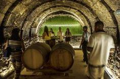 Bodegas Tritium. To learn more about #Bilbao   #Rioja, click here: http://www.greatwinecapitals.com/capitals/bilbao-rioja