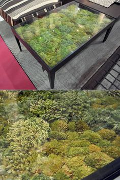 Thai home furniture company Ayodhya's Secret Garden Collection managed to bring nature indoors - without the effort and attention that traditional, live plants require. Each table consists of various types of dried moss beneath a transparent glass tabletop; no watering necessary.