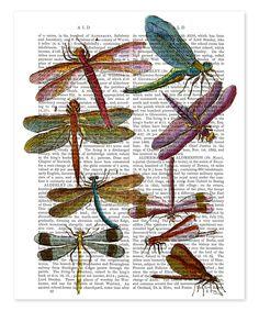 Vintage Dragonfly Art Print Entomology Odonata on upcycled dictionary page Dictionary Art, Picture Dictionary, Dragonfly Art, Antique Books, Baby Clothes Shops, Canvas Artwork, Online Art, Book Art, Art Prints