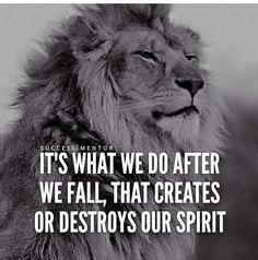 Best 30 Lion Motivational Quotes - Home Inspiration Inspirational Quotes With Images, Great Quotes, Motivational Quotes, Quotes Images, Word Up, Wisdom Quotes, Me Quotes, Grunge Quotes, Quotes Women