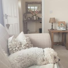 Living Room and Hallway #next #nexthome #nextofficial #myhome #mystyle #livingroom #bichonfrise #bichon #dog #petsofinstagram #flowers""