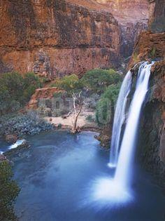Havasu Falls, Grand Canyon, Arizona, USA Photographic Print by Charles Gurche at Art.com