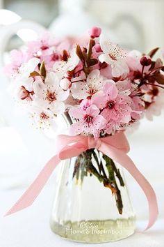 "seasonalwonderment: "" Cherry Blossom Bouquet ~ Sylvia Home & Inspiration "" Types Of Flowers, Fresh Flowers, Spring Flowers, Beautiful Flowers, Spring Bouquet, Wax Flowers, Flowers Nature, Cherry Blossom Decor, Cherry Blossom Wedding"