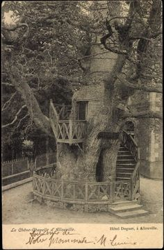 Wow! Vintage Tree House, where Eloise' mother-in-law resides, on the west lawn overlooking the stables.