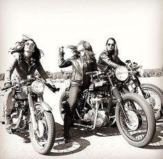 Muestra de la motocicleta (@MotorcycleShows) | gorjeo