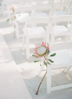 Sweet and simple: http://www.stylemepretty.com/2015/02/10/inspired-by-johnny-depps-beachfront-nuptials/