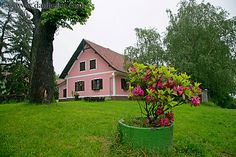 Pink house on a hill~