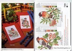 Gallery.ru / Фото #58 - Rico 33, 34, 35, 36, 37, 38, 39, 40 - Fleur55555