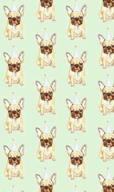 Bulldog wallpaper WhatsApp