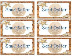 Sand Dollars - Money System for Ocean Theme Classroom