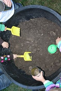 Digging worms! Would be cute to have ground up Oreos and gummy worms!