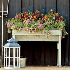 Pink Petunia Window Box | If you have space to fill, 'Supertunia Vista Bubblegum' is a smart choice, growing 16 to 24 inches tall and wide. | SouthernLiving.com