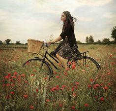 Just a beautiful bike picture.