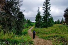 Hiking the Spirit Sands & Devils Punch Bowl Trails near Brandon, MB - Hike Bike Travel Brandon Manitoba, Visit Canada, What A Wonderful World, Canada Travel, Sands, Hiking Trails, Outdoor Activities, Wonders Of The World, Places To Go