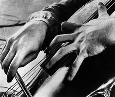 Hands of Mstislav Rostropovich, 1961 -by Erich Auerbach [+]  entregulistanybostan:    Les mains de Mstislav Rostropovich