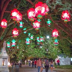 Auckland Lantern Festival - Auckland Events   Heart of the City
