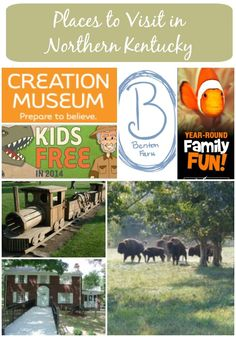 Visiting Northern Kentucky?  Here is a list several popular activities that are either free or reasonably priced in the area.