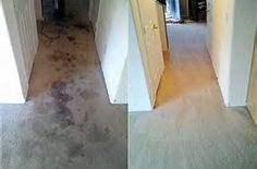 The process is preceded by a chem dry carpet pre cleaning process carpet steam cleaner hire diy solutioingenieria Images