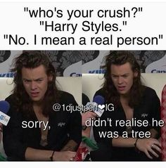 Actually mine is Niall. Harry is my bro so it's a lil weird but I agree with this post