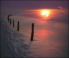 Merveilleux hiver ♥ ♥