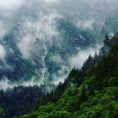 Alaska is actually super cool! Who wants to go?! #alaska #nature #travel #adventure Follow @ilovetravelbugblogger