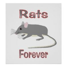Rats Art | Rats Paintings & Framed Artwork by Rats Artists