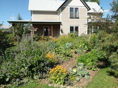 Video/Photos - Gorgeous & Edible Landscaping
