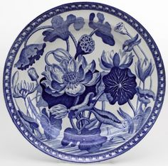 """The Darwins used the Wedgwood  ""Water Lily"" china pattern in their household."""