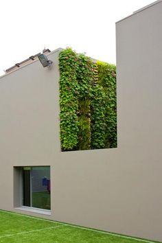 // Villa Cascais by Frederico Valsassina Arquitectos. Landscape by Proap. Vertical Garden by Vertical Garden Design #greenarquitecture