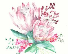 Protea Print, Protea Flower, Botanical Art, Protea Painting, King Protea Print, Pink Wall Art, Flower Print, Botanical Print, Flowers Protea Art, Protea Flower, Protea Bouquet, Nursery Wall Stickers, Flower Wall Stickers, Flower Prints, Flower Art, Watercolor Paintings, Original Paintings