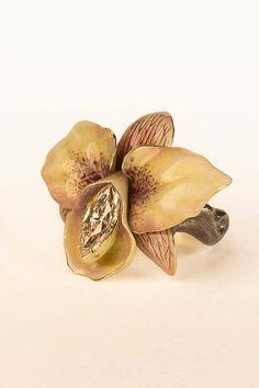 Ilgiz F. Orchid