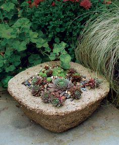 Make Your Own Hypertufa Container Hypertufa looks like stone but weighs less and takes whatever shape you want Great Article with step by step instructions Read more: http://www.finegardening.com/make-your-own-hypertufa-container#ixzz3RTQD3jqb  Follow us: @finegardening on Twitter | FineGardeningMagazine on Facebook