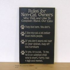 Rules for Non-Cat Owners Who Visit and Like To Complain About Our Cats