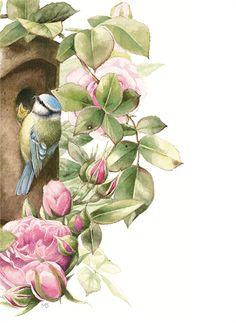 Natuur illustratie van Marjolein Bastin.